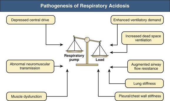 respiratory acidosis, respiratory alkalosis, and mixed disorders, Skeleton