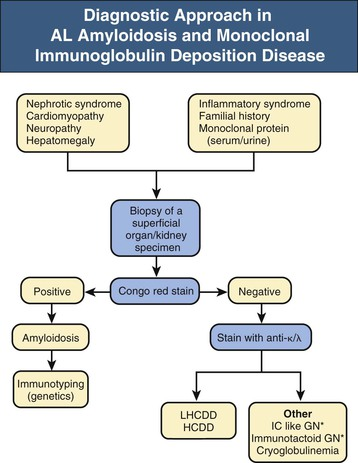 Figure 27 5 Algorithm Of Diagnostic Procedures In Light Chain (AL)  Amyloidosis And Monoclonal Immunoglobulin Deposition Disease (MIDD).